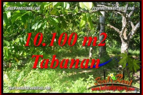 INVESTASI PROPERTY, TANAH MURAH di TABANAN DIJUAL TJTB360