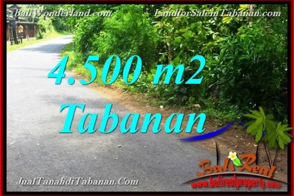 TANAH MURAH di TABANAN DIJUAL 4,500 m2 di Tabanan Selemadeg