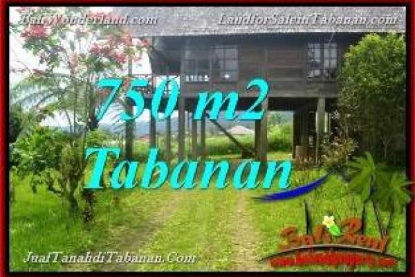 JUAL TANAH MURAH di TABANAN BALI 750 m2  view Kebun dan Gunung