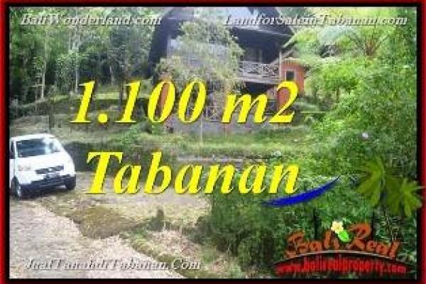 TANAH MURAH JUAL di TABANAN BALI 11 Are View Danau Beratan dan Gunung