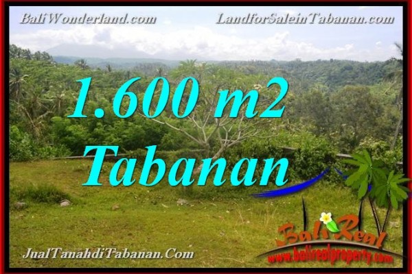 JUAL TANAH DI TABANAN BALI 1,600 m2 di Tabanan Selemadeg