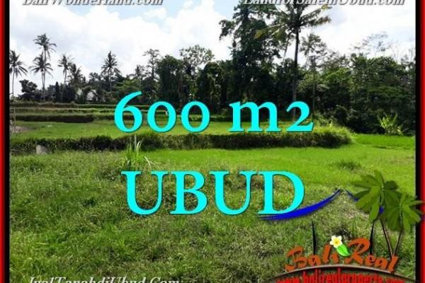 DIJUAL TANAH di UBUD 600 m2 di Ubud Pejeng