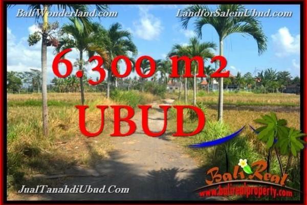 TANAH MURAH di UBUD BALI 6,300 m2  View Tebing link Villa