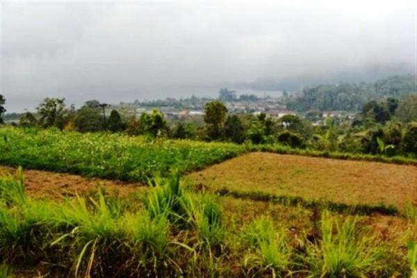 Tanah dijual di Bedugul Tabanan, Bali – TJBE001