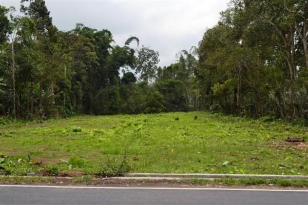 Dijual Tanah Posisi Strategis Di Luwus Bedugul, Bali – TJBE005