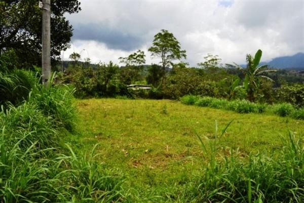 Tanah Pinggir Jalan Dijual di Baturiti, Bali – TJBE011