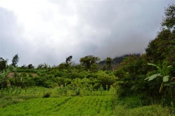 Dijual Tanah Murah View Cantik di Bedugul, Bali – TJBE018