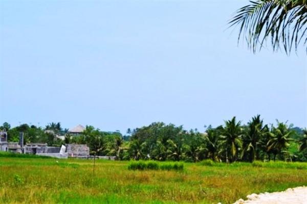 Tanah dijual di Canggu Bali – TJCG037