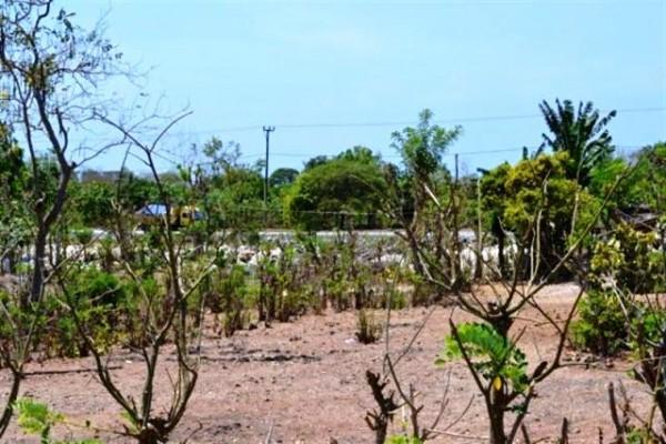 Tanah Untuk Villa dan Hotel Dijual di Jimbaran, Bali – TJJI004