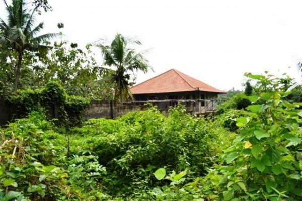 Dijual Tanah 12 Are di Ubud, Bali – TJUB029
