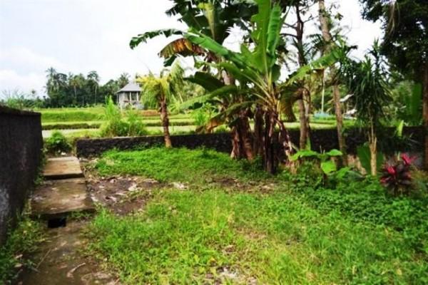 Dijual Tanah Untuk Villa Di Ubud, Bali – TJUB048
