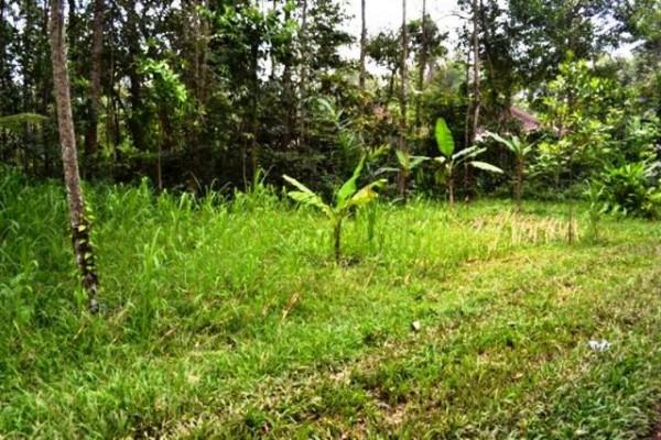 46 Are Tanah Dijual di Pejeng Ubud, Bali – TJUB069