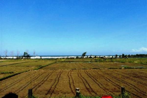 Dijual Tanah Pinggir Pantai Di Jembrana – T1020