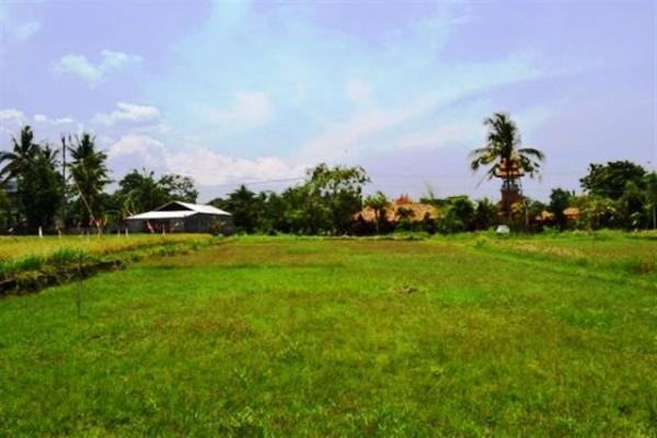 Tanah Dijual dekat pantai Pererenan, Canggu. Pinggir jalan view sawah dan sungai – TJCG038