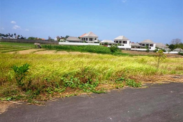 Tanah Dijual di canggu view sawah di pinggir jalan – TJCG054