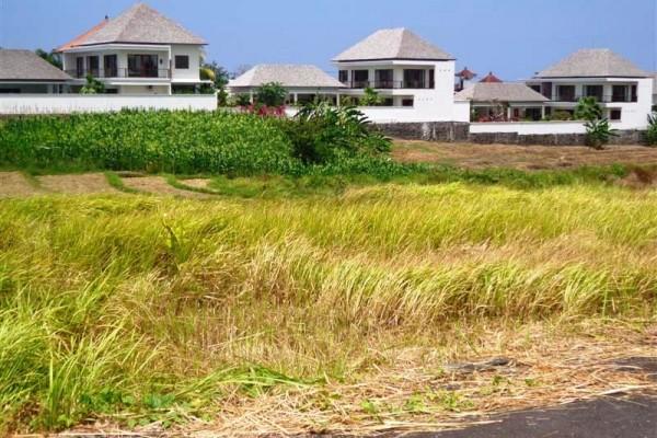Tanah dijual di Canggu Bali view sawah lokasi Kayu Tulang canggu – TJCG054B
