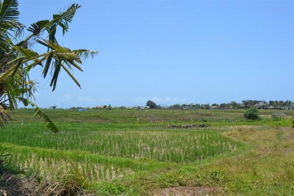 Dijual tanah di Cemagi Canggu, Kuta, Bali – TJCG061