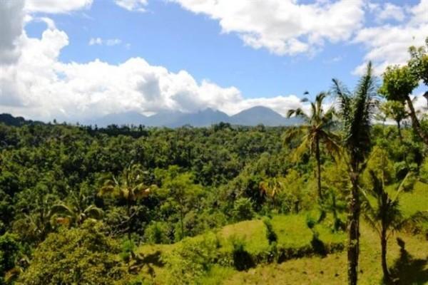 Jual tanah di Ubud, Bali dengan view sawah dan sungai Ayung – TJUB045