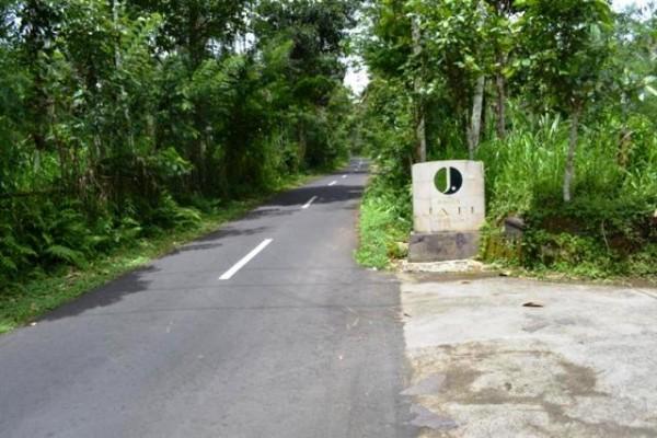 Tanah dijual di Ubud, Taro Tegalalang 40 are – TJUB059