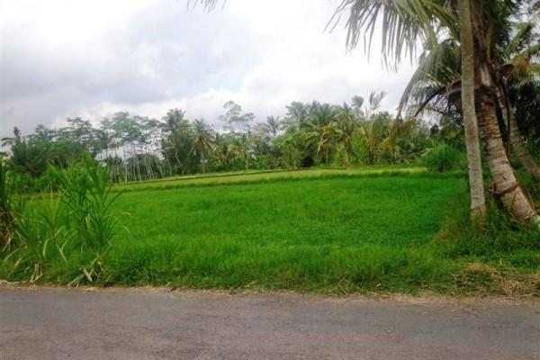 Tanah dijual di Ubud cocok untuk villa – TJUB108