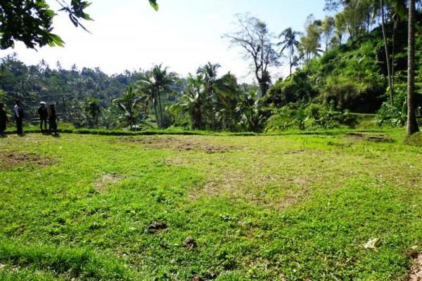 Dijual tanah di Ubud view sangat cantik – TJUB114