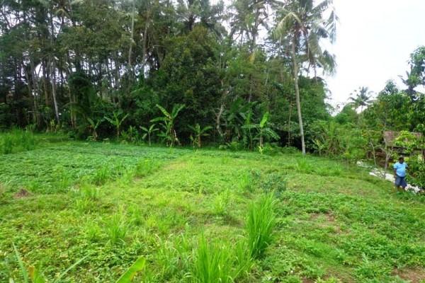 Dijual Tanah Di Ubud Bali di lingkungan villa – TJUB122