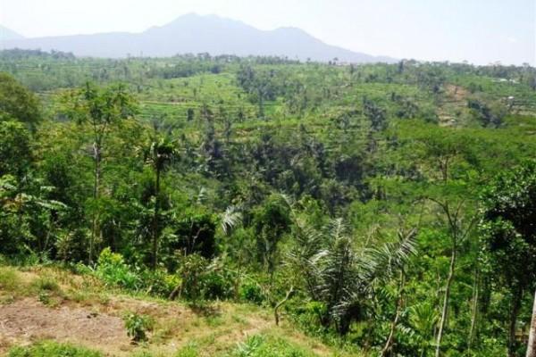 Tanah dijual di Ubud view spectakuler di Ubud Payangan, Bali – TJUB132