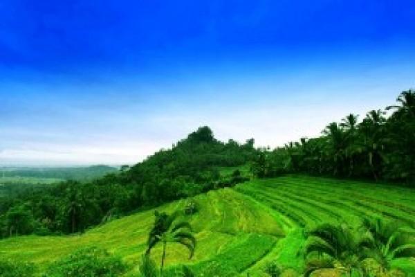 Bukit Jambul Bali