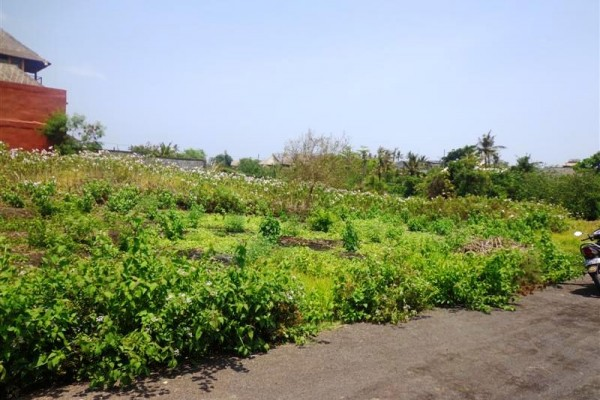 Tanah di Dijual Canggu view sawah dijual dekat pantai – TJCG059
