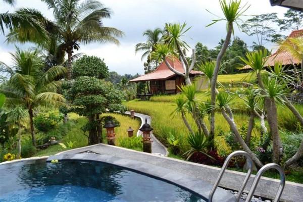 Jual tanah tanah murah di Ubud Bali – tanah tanah murah dijual di Ubud Bali 1
