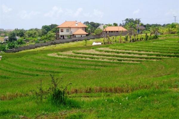 Tanah dijual di Canggu Kuta view sawah di Pererenan – TJCG076