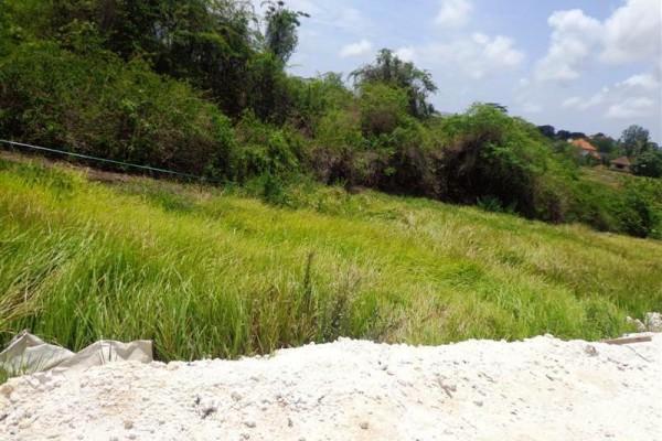 Jual Tanah di Canggu Brawa cocok untuk villa – TJCG075