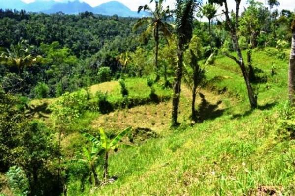 Jual tanah di Ubud view gunung 7,5 Ha @ 55 Juta