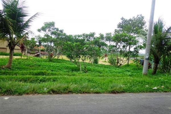 Tanah dijual di Tegalalang cocok untuk villa – TJUB142