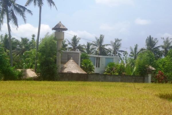 Jual tanah di Ubud center pemandangan sawah di Pinggir jalan Ubud – TJUB150