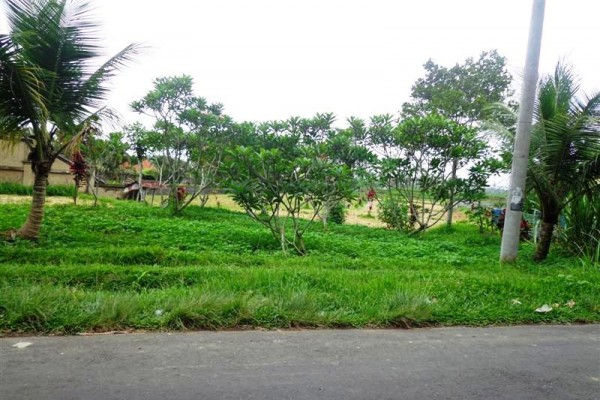Jual Tanah di Ubud lokasi di pinggir jalan dan cocok untuk villa– TJUB142B