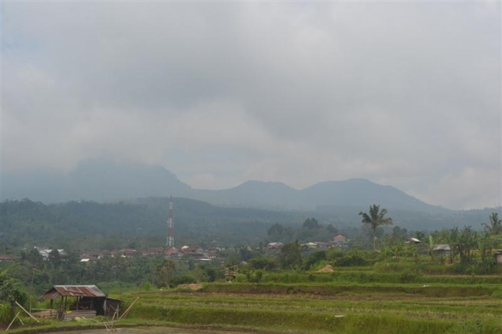 Dijual tanah di baturiti tabanan Bali view sawah dan gunung (TJBE032)
