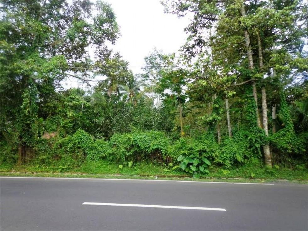 Dijual di tanah murah di Luwus Tabanan Bali, Cocok untuk lahan bisnis – TJBE030