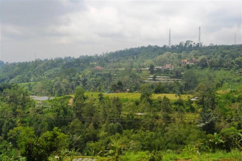 Dijual tanah di Baturiti Tabanan Bali, di Bedugul view fenomenal (TJBE034)