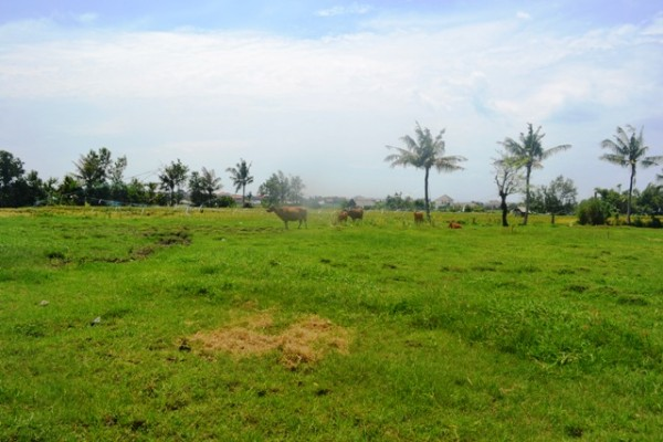 Tanah dijual di Canggu, dekat pantai Batu Bolong TJCG084