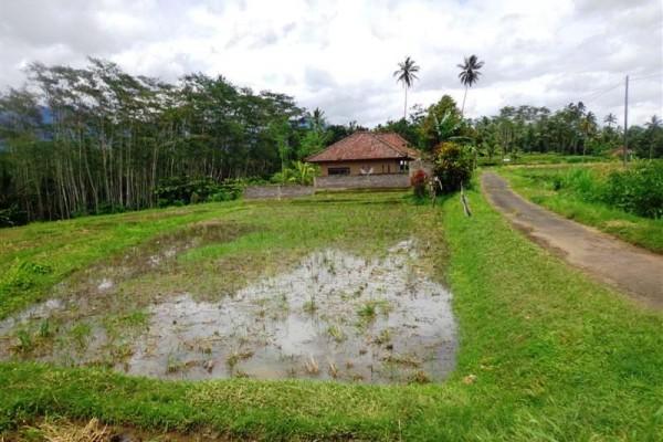 Dijual tanah murah di Penebel 17,38 are View Sawah Dan Gunung – TJTB014