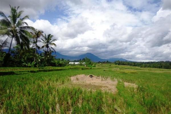 Dijual Tanah di Penatahan 25 are View Sawah,Gunung Dan Laut Nusa Dua – TJTB016
