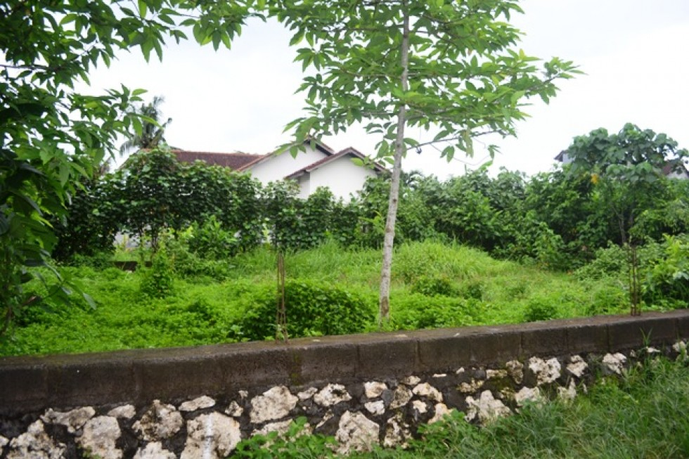 Tanah dijual di Canggu 200 m2 siap dibangun (TJCG083)
