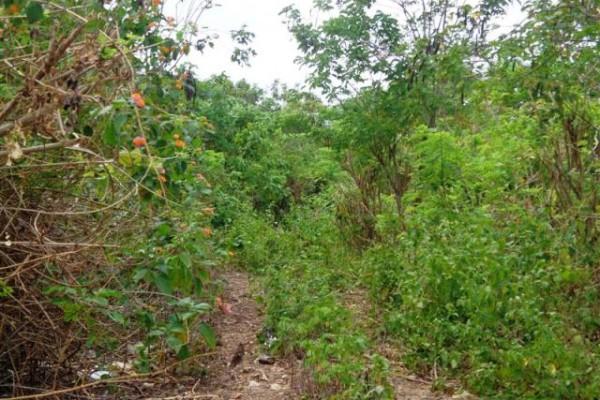 Jual tanah di Jimbaran – TJJI022 dekat pantai