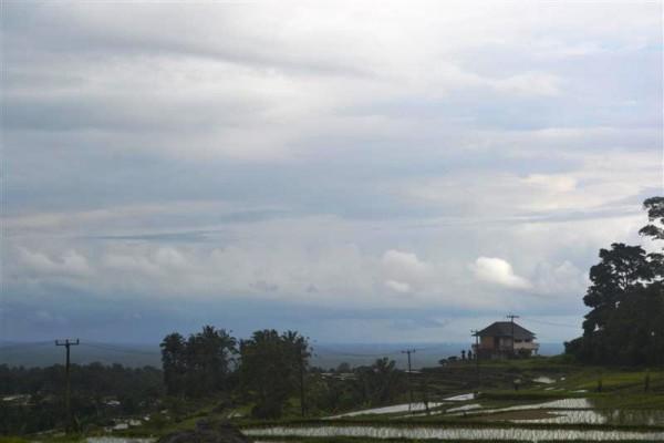 Tanah dijual di Tabanan Bali, Kemegahan Gunung Batukaru di selimuti sawah terasering (TJTB019 )