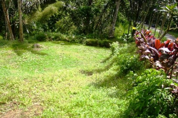 Jual tanah di Tegalalang, Ubud 26 are – TJUB081