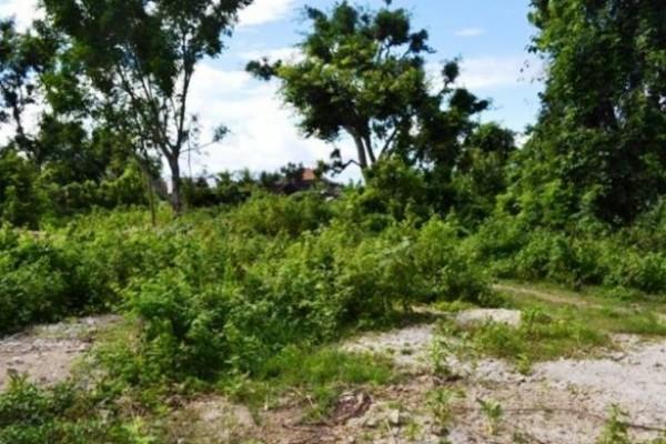 Jual tanah di Jimbaran – TJJI013 cocok untuk villa
