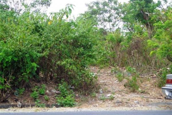 Jual tanah di Jimbaran 2,500 m2 di Jimbaran Ungasan