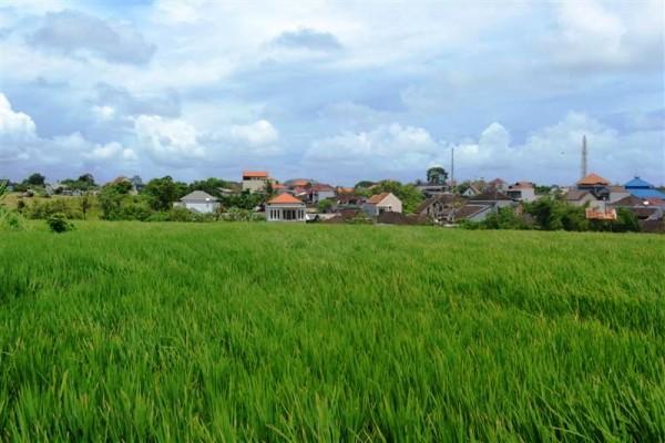 Tanah dijual di Canggu 1,730 m2 di Canggu