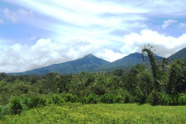 Tanah di Tabanan Bali dijual 1.500 m2 View Gunung di Tabanan